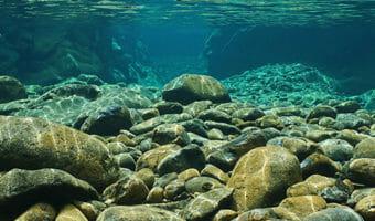 rocky-ocean-bottom