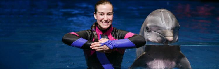 Dolphin Celebration at Georgia Aquarium
