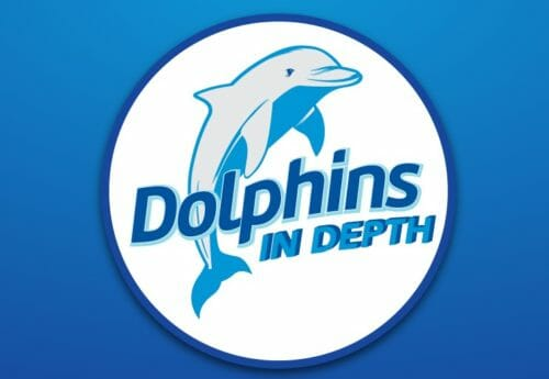 Dolphin Presentation 3