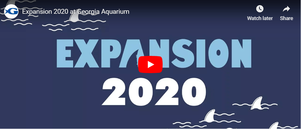 Expansion 2020