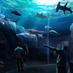 Georgia Aquarium Breaks Ground on Expansion 2020