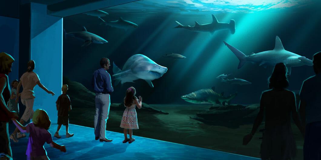 Georgia Aquarium Breaks Ground on Expansion 2020 4
