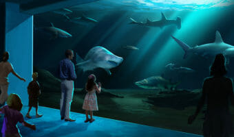 Georgia Aquarium Breaks Ground on Expansion 2020 4