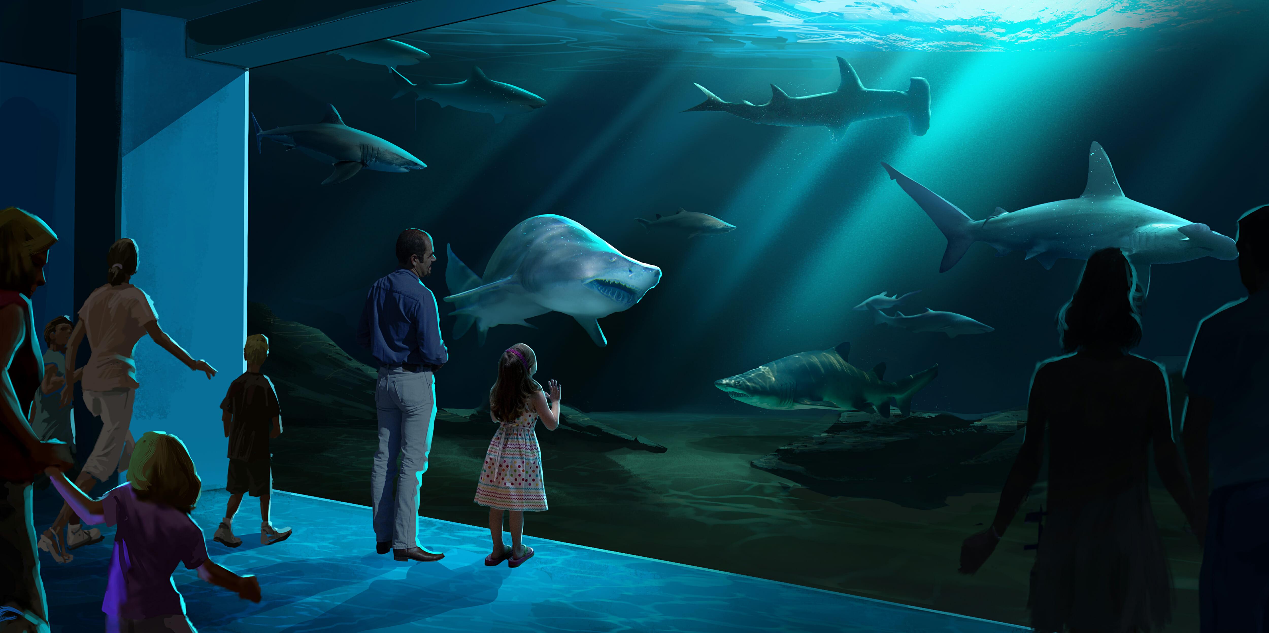 Georgia Aquarium Breaks Ground On