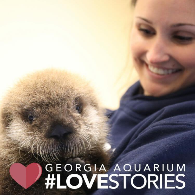Georgia Aquarium Premieres New Facebook Watch Series: Aquarium Love Stories