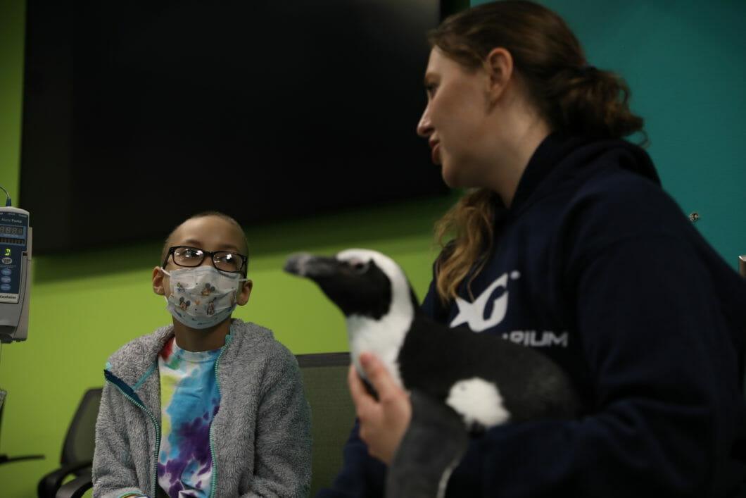 Georgia Aquarium Visits Children's Healthcare of Atlanta 1