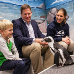 Penguin Encounter 7