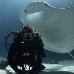Rebreather Dive Program