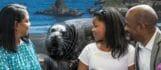 Seal Encounter 2