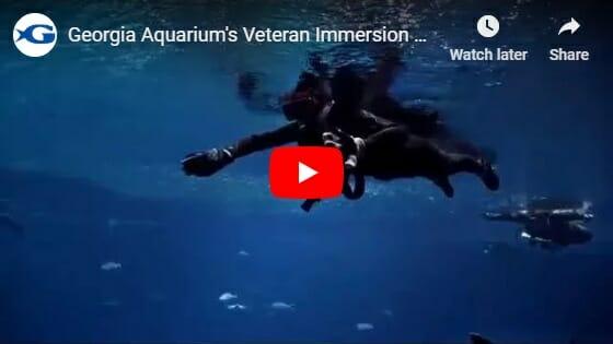 Veterans Immersion Program 1