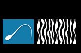 Sezarc Logo