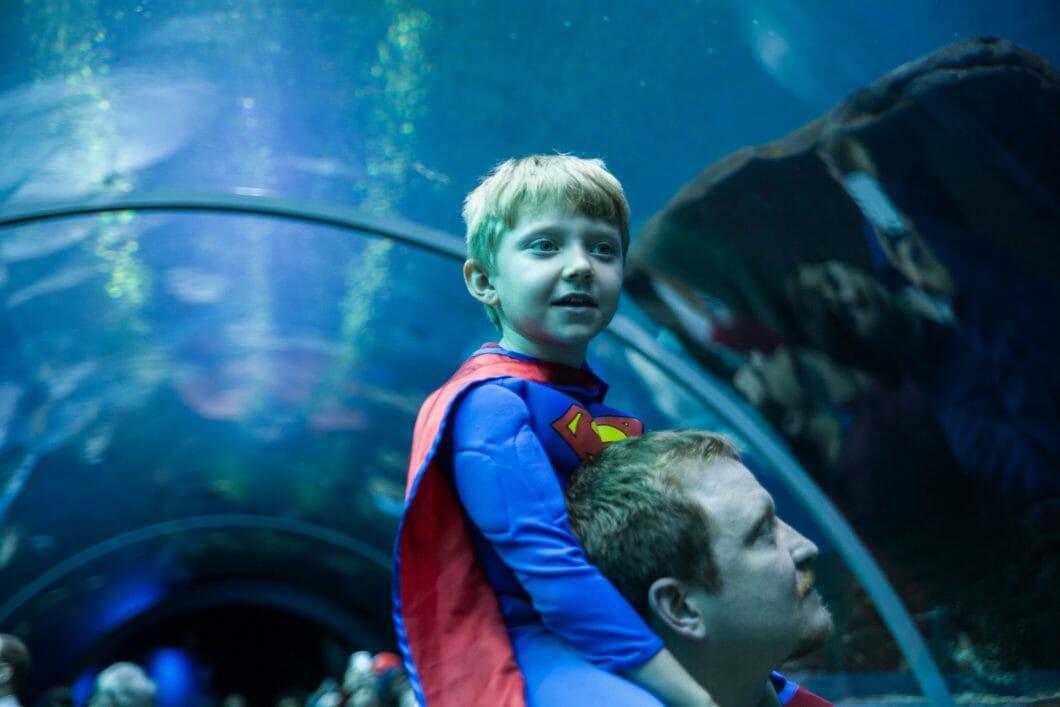 Superhero for the Ocean Day 6