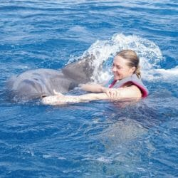 From a Passion to a Profession: My Life as a Dolphin Trainer