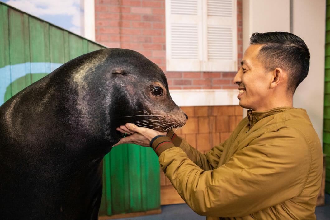 Sea Lion Encounter 10