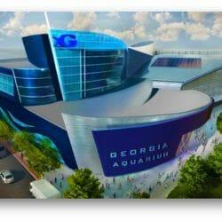 Georgia, You're Going to Need a Bigger Aquarium 2
