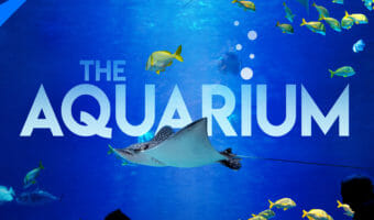 "All-new TV Series ""The Aquarium"" Episode 1"