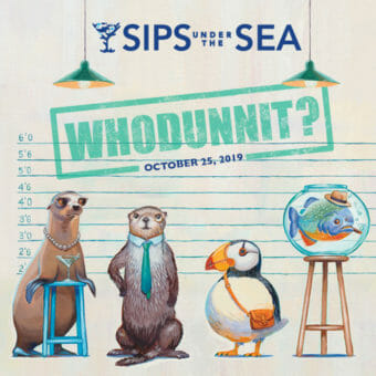 Sips Under the Sea: Whodunnit? 2