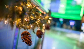 Christmas Tree Lighting (November)