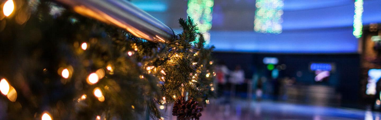 Christmas Tree Lighting (November) 1