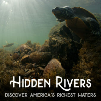 Hidden Rivers 3
