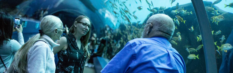 Georgia Aquarium Volunteer Programs
