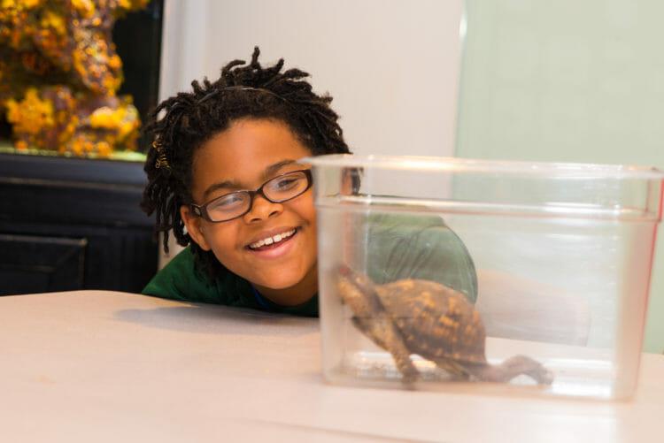 School Programs at the Aquarium