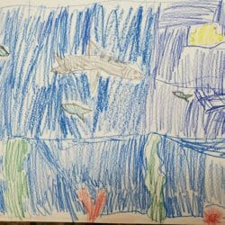 At-home Learning with Georgia Aquarium 45