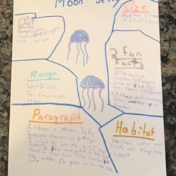 At-home Learning with Georgia Aquarium 36