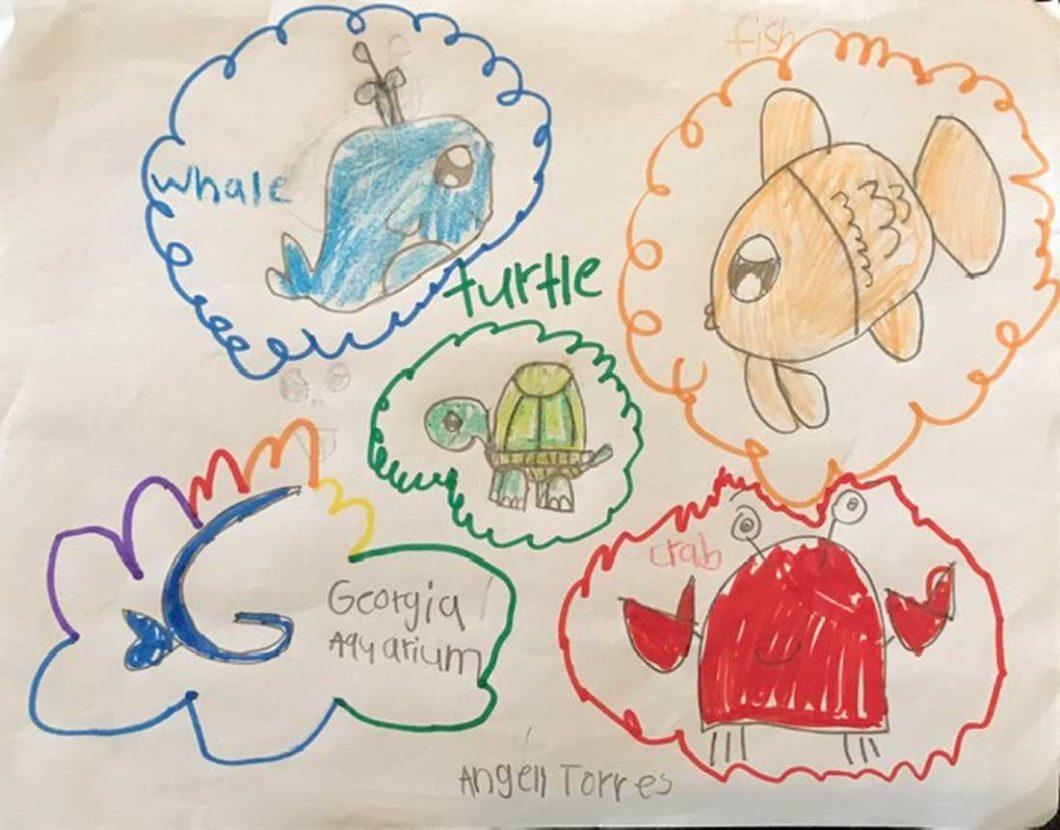 At-home Learning with Georgia Aquarium 8