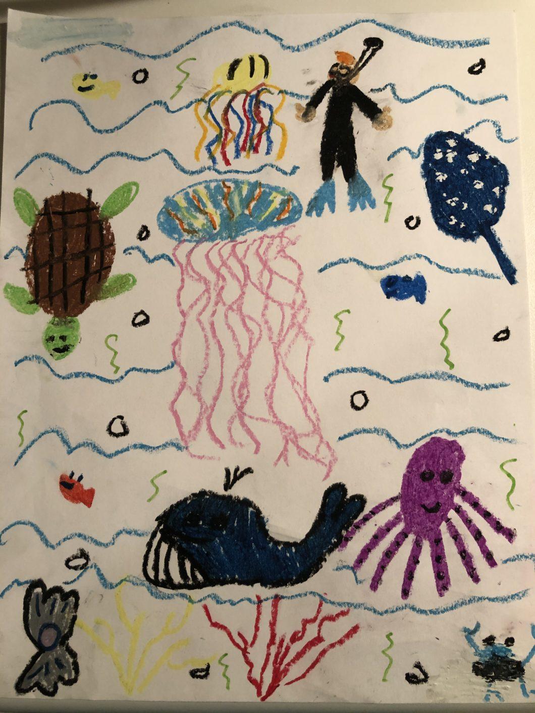 At-home Learning with Georgia Aquarium 10