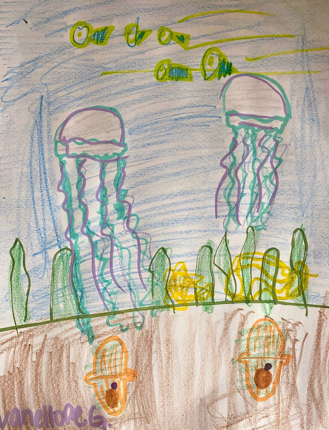At-home Learning with Georgia Aquarium 22
