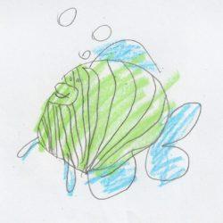At-home Learning with Georgia Aquarium 55