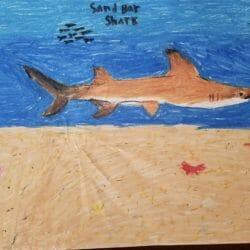 Creative Kids Art Gallery 4