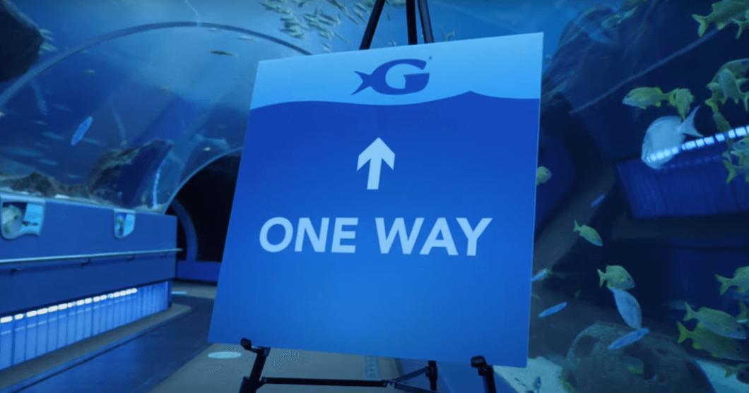 Visit Today   Georgia Aquarium   Located in Downtown Atlanta, Georgia 149
