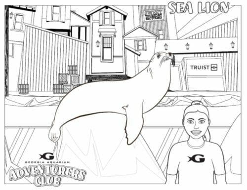 Georgia Aquarium's Adventurers Club 12