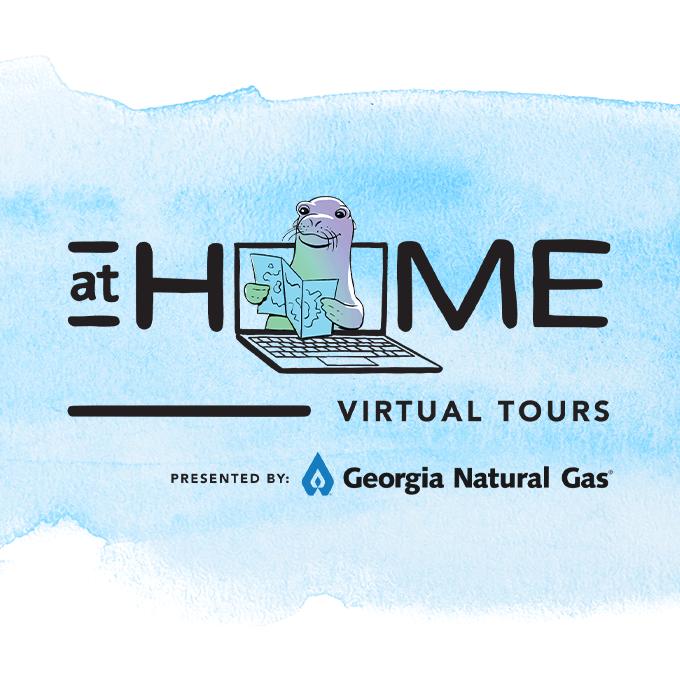 Virtual Tours Logo