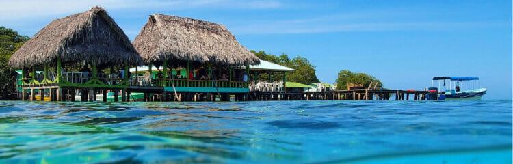 Explore Exotic Central America with Georgia Aquarium 8