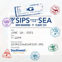 Sips - Flight 225 1