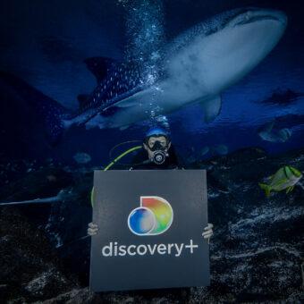 Discovery and Georgia Aquarium Enter Into All-New Multi-Platform Content Partnership